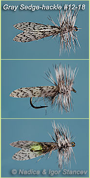 Gray-Sedge-hackle_005